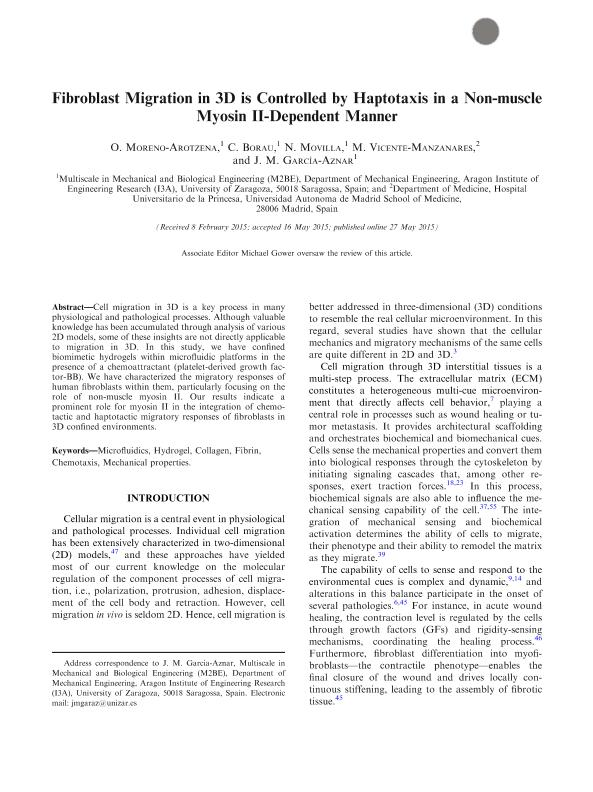 Fibroblast migration in 3D is controlled by haptotaxis in a non-muscle myosin II-dependent manner