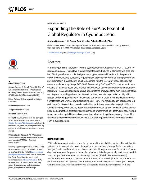 Expanding the role of FurA as essential global regulator in cyanobacteria