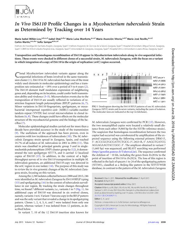 In Vivo IS6110 profile changes in a Mycobacterium tuberculosis strain as determined by tracking over 14 years