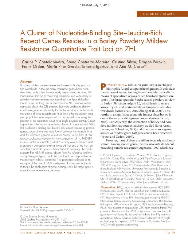 A cluster of nucleotide-binding site-leucine-rich repeat genes resides in a barley powdery mildew resistance quantitative trait loci on 7HL