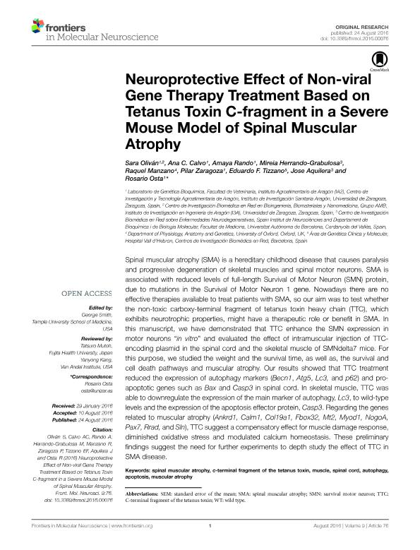 Neuroprotective effect of non-viral gene therapy treatment based on tetanus toxin C-fragment in a severe mouse model of spinal muscular atrophy