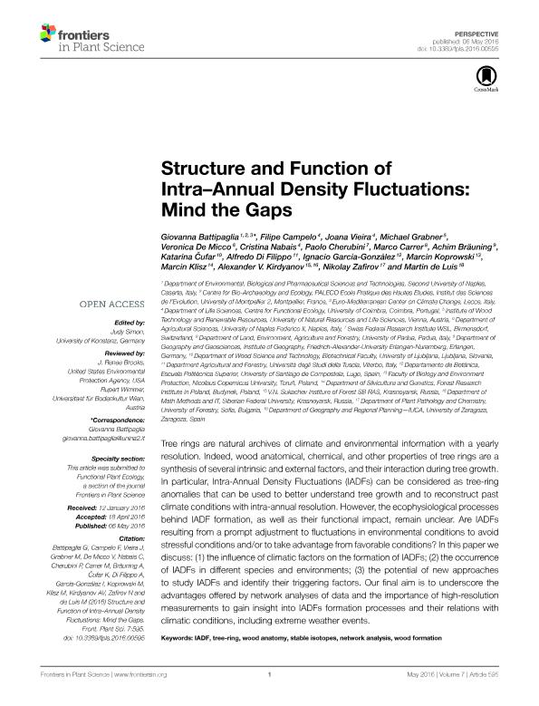 Structure and function of intra–annual density fluctuations: Mind the gaps