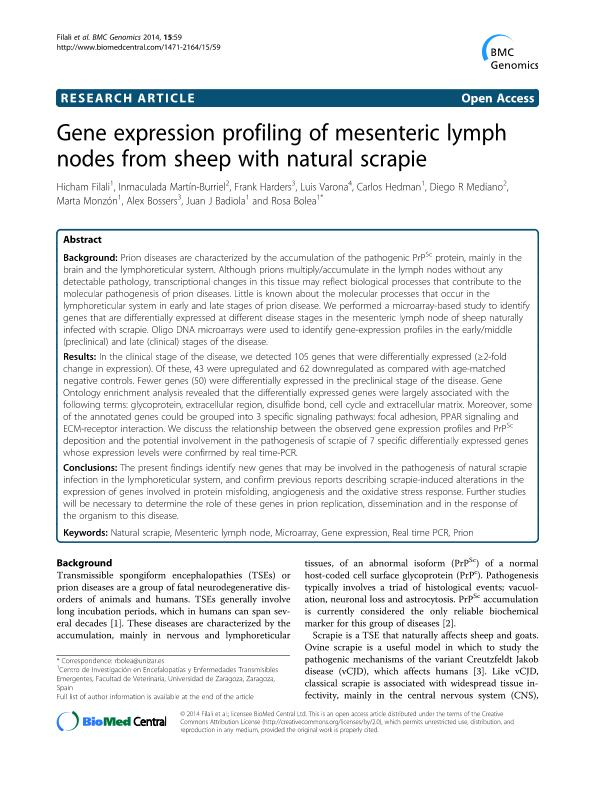 Gene expression profiling of mesenteric lymph nodes from sheep with natural scrapie