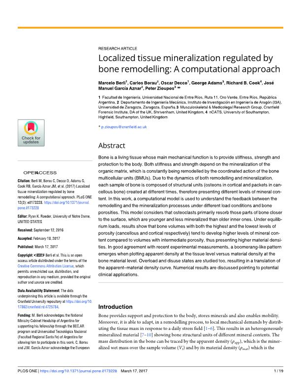 Localized tissue mineralization regulated by bone remodelling: A computational approach