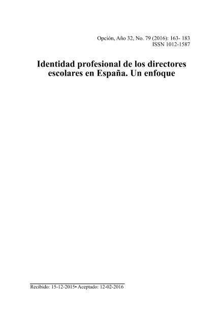 Identidad profesional de los directores escolares en España. Un enfoque biográfico narrativo
