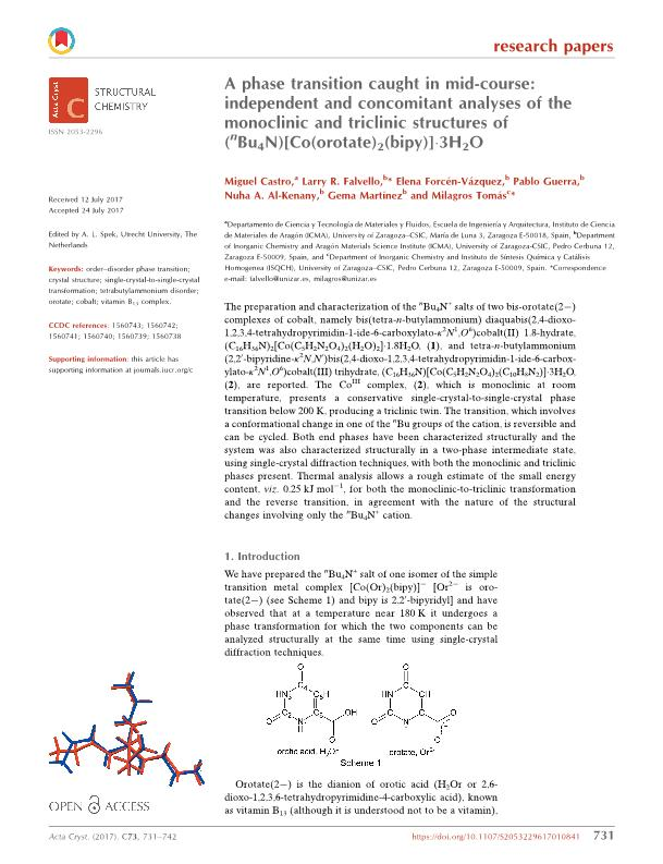 A phase transition caught in mid-course: Independent and concomitant analyses of the monoclinic and triclinic structures of (nBu4N)[Co(orotate)2(bipy)]·3H2O