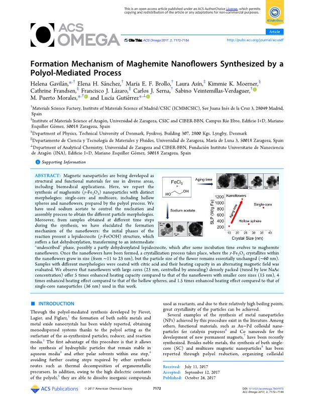 Formation Mechanism of Maghemite Nanoflowers Synthesized by a Polyol-Mediated Process