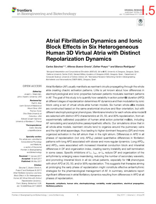Atrial fibrillation dynamics and ionic block effects in six heterogeneous human 3D virtual atria with distinct repolarization dynamics