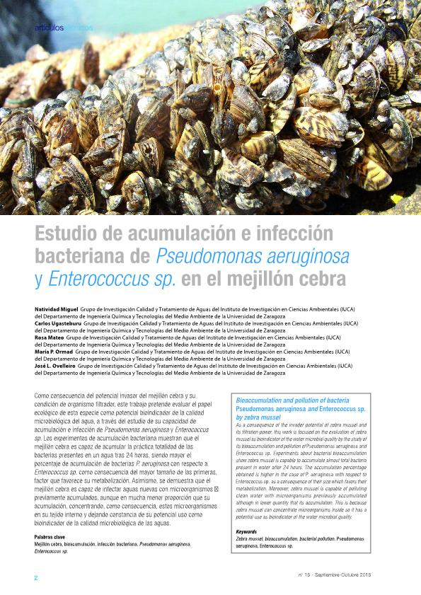 Estudio de acumulación e infección bacteriana de Pseudomonas aeruginosa y Enterococcus sp. en el mejillón cebra