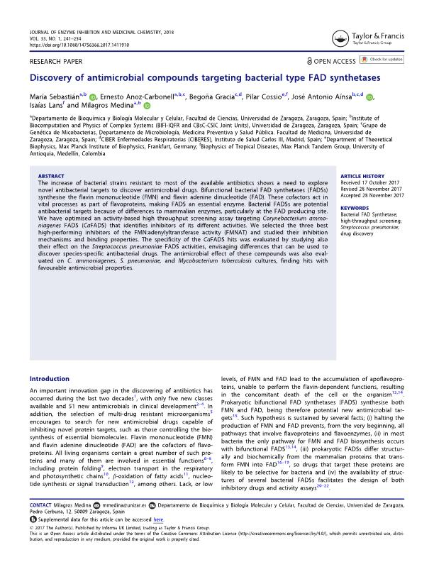 Discovery of antimicrobial compounds targeting bacterial type FAD synthetases