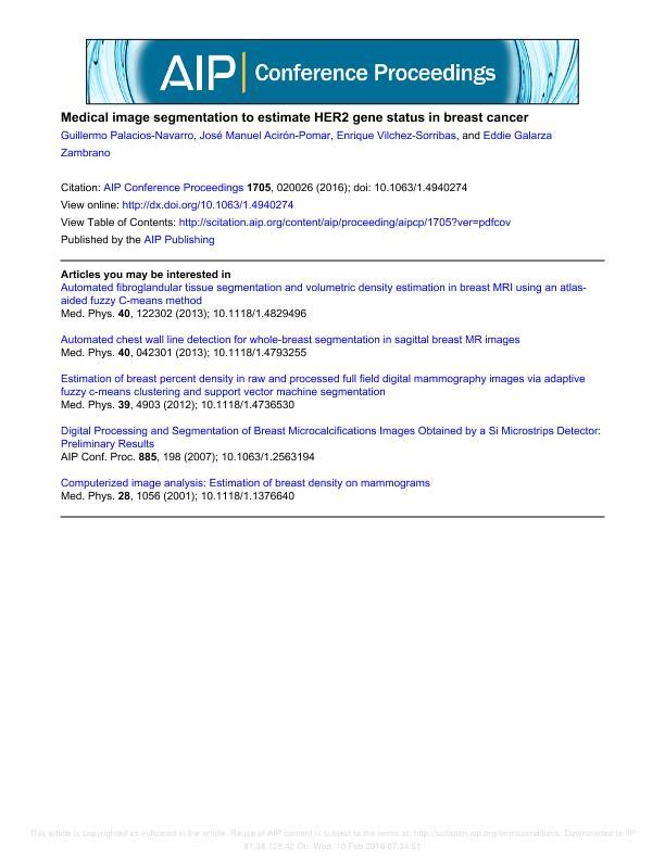 Medical Image Segmentation to Estimate HER2 Gene Status in Breast Cancer