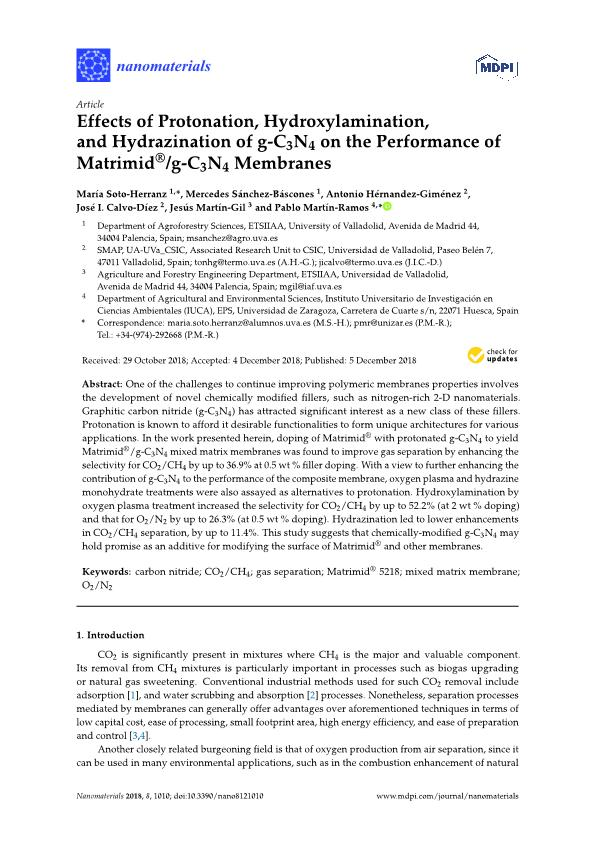 Effects of Protonation, Hydroxylamination, and Hydrazination of g-C3N4 on the Performance of Matrimid®/g-C3N4 Membranes